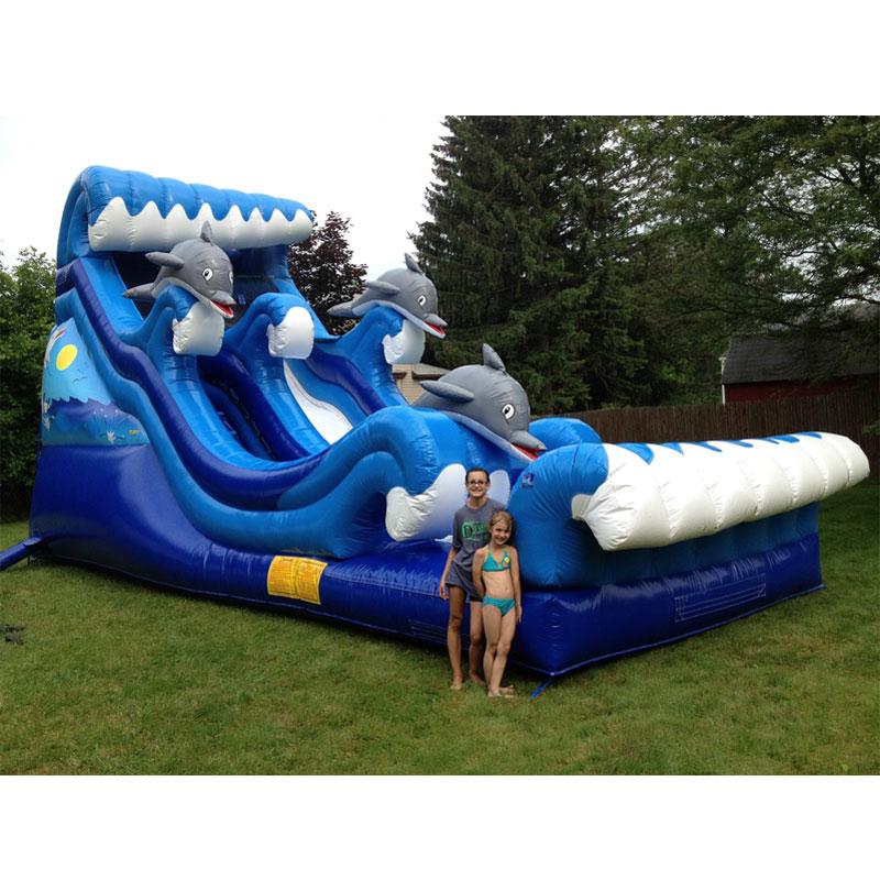Grande glissière gonflable de dauphin de catégorie commerciale de glissière d'eau avec la glissière d'enfants de piscine pour l'aire de jeux extérieure