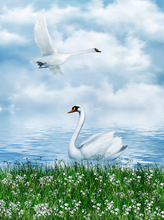 5D DIY Flying Swans Diamond Painting Full Square Animals Swan in the Lake Embroidery Rhinestones Mosaic Home Decor