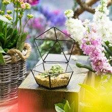 Small Modern Artistic Clear Jewel boxed Pentagon Shape Glass Geometric Terrarium Plant Succulent Planter Box Moss