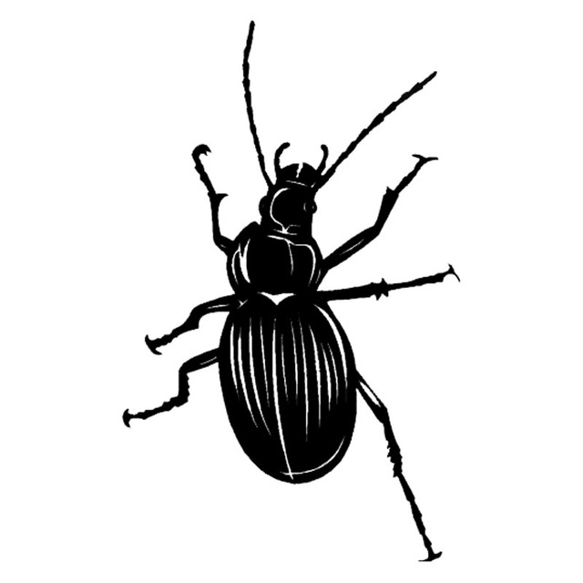 Us 178 96152 Cm Lebendige Käfer Muster Interessante Insekt Auto Aufkleber Auto Styling Aufkleber Schwarzsilber S1 2860 In 96152 Cm Lebendige