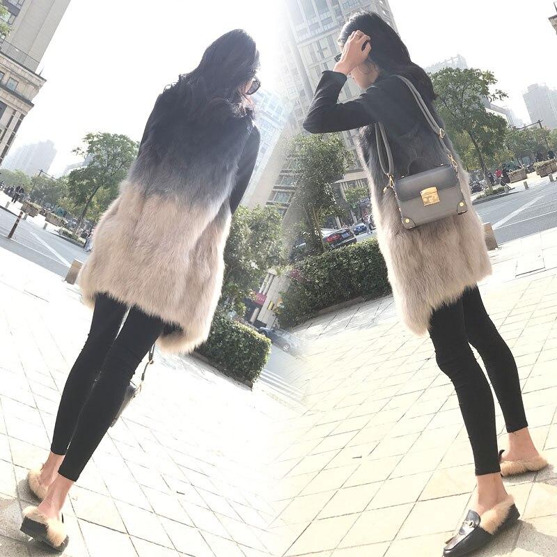 Long Veste Printemps Nouvelle Femmes En Vêtements 2019 Version Renard Mode Fourrure Lâche D'hiver Et De Coréenne Jacke Moyen 4XFBfpwq