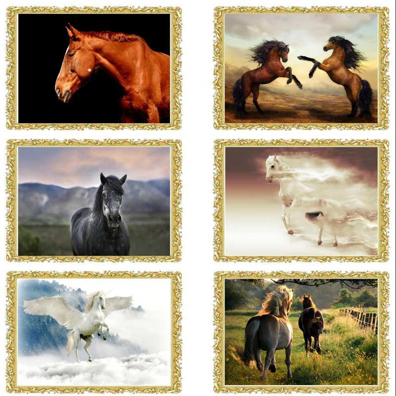 2018 new Home Decoration Diy 5D Diamond Embroidery Cross Stitch Kits Square Resin cute Horse Diamonds Painting Hobby Craft FC579