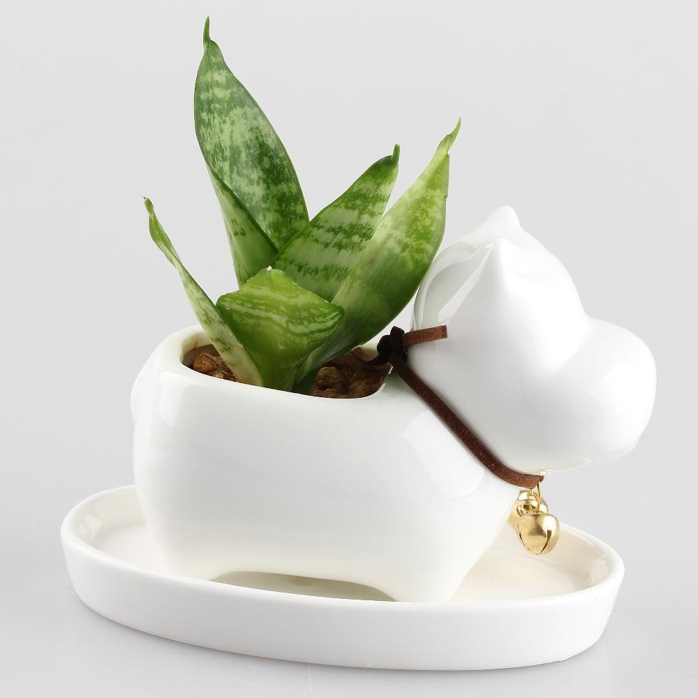 compare prices on bonsai pot tray online shopping buy low price kawaii succulent plants ceramic flower pot dog pearl white planter bonsai pots garden porcelain doggie flowerpot