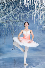 Professional ballet  tutu pancake classical ballerina Pink Fairy in Sleeping beauty for Sugar Plum coppelia