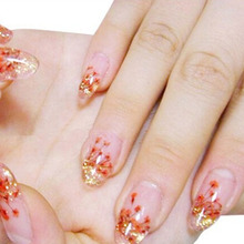 High Quality 2017 New 36 Pcs Beauty Nail Device 12 Color Cute Real Dried Flower Dry 3d Acrylic False Tips Art Decoration Ca