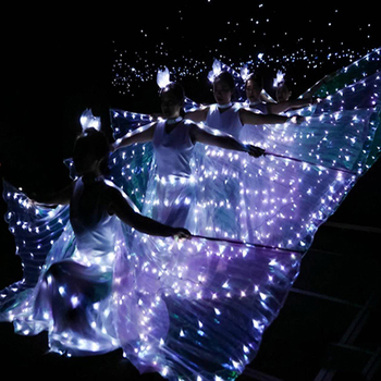 LED Luminous Wings Ballet Costume Fluorescent Butterfly Dance Costume Belly Dance Props Women Girls Angle Wings Dress обувь для тибетских танцев butterfly dance 1204