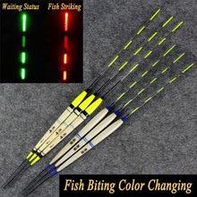 2PCS Carp Fishing Night Fishing Inductive Electronic Float Luminous Elec Bobbers Drifts Battery Fishing Tackle