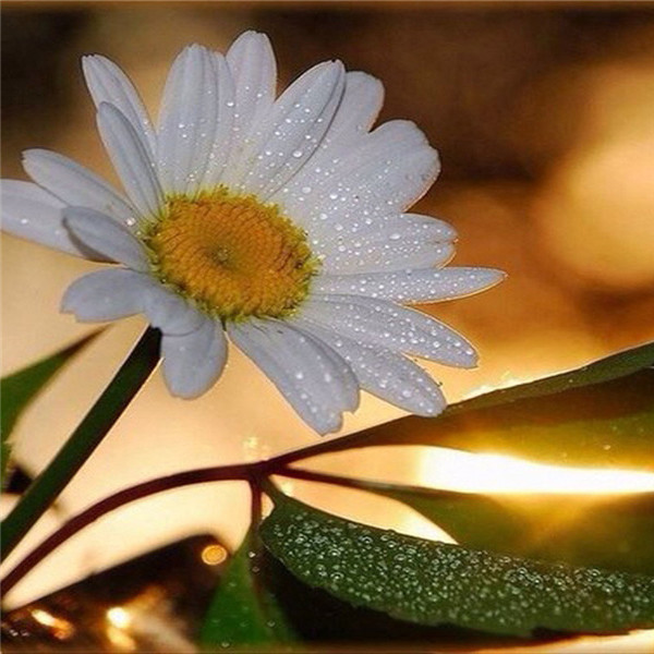 DIY Diamond Flower