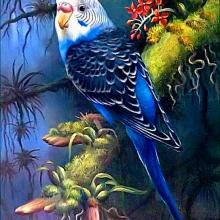 diamond embroidery parrot,full square,full package,rhinestone painting,5d diamond,animals,diamond painting birds