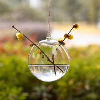 2016 New 10CM Type Glass House Ball Hanging Green Transparent Crystal Glass Vase Hydroponics