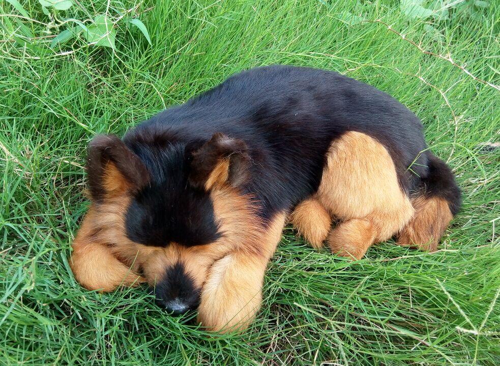 Grand jouet de simulation Wolfhound jouet de poupée de chien dormant réaliste environ 40x14 cm
