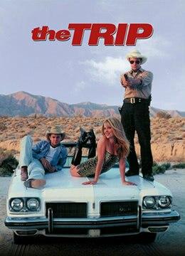 《旅程》2002年美国剧情,喜剧,爱情,同性电影在线观看