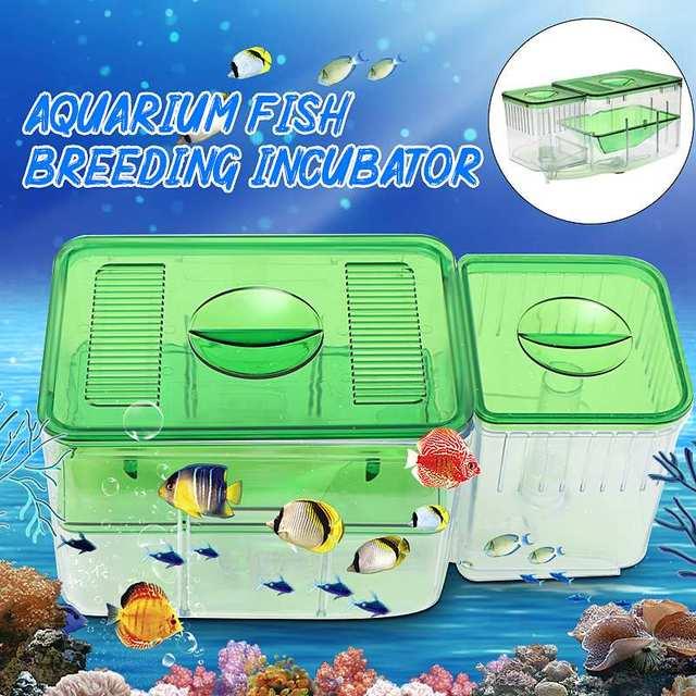 Fish Breeding Aquarium