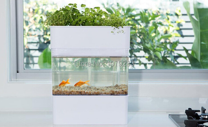 AQUAPONICS Fish Tank With Plants Growing Bed, Watering Recycle System