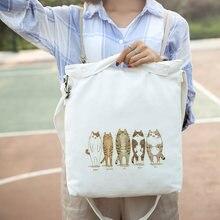 40fb7958a532b Japonya ve güney kore kadın askılı omuz çantası çanta taşınabilir yeni  küçük taze kedi baskı çanta