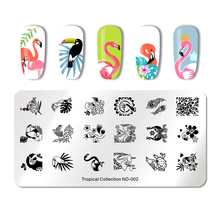NICOLE DIARY Nail Art Stamping Plate Rectangle Round Fruit Pineapple Pattern Template Manicure Stencil