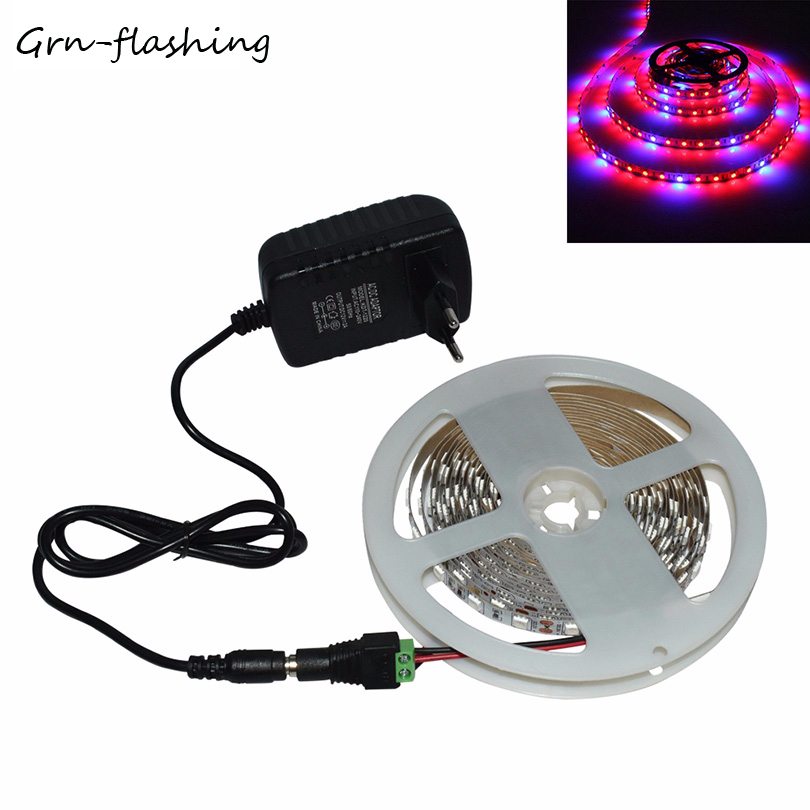 Smd5050 Led Phyto Lamps Grow Lights 1m 2m 3m 4m 5m Led Plant Growth Strip Light Set With Adapter For Greenhouse Hydroponic Plant