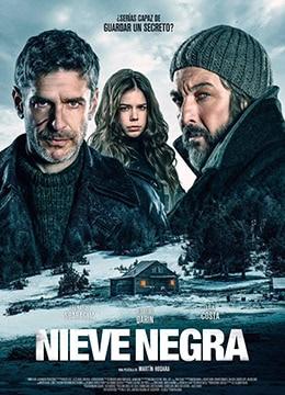 《黑雪》2017年阿根廷,西班牙剧情,犯罪,悬疑电影在线观看