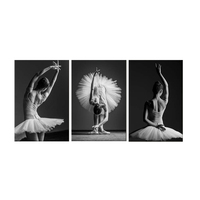 5D DIY Diamond Painting swan girl Full Square Drill 3 piece set Ballet Dancer Painting Embroidery Cross Stitch Mosaic Home Decor