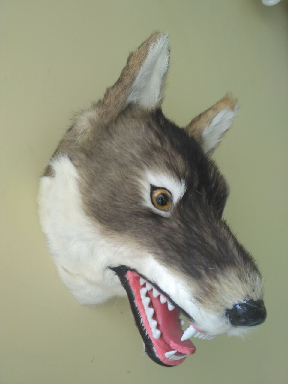 big new simulation wolf head model polyethylene&furs wolf 's head model 30x23x25cm 1603 big sitting simulation white cat model plastic