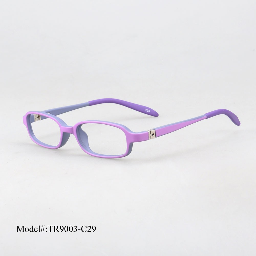 tr9003 C29