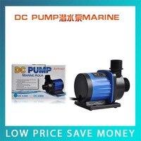 24V DC Mini Electric Pump/Salt Water Pump/Fish Pond Pump