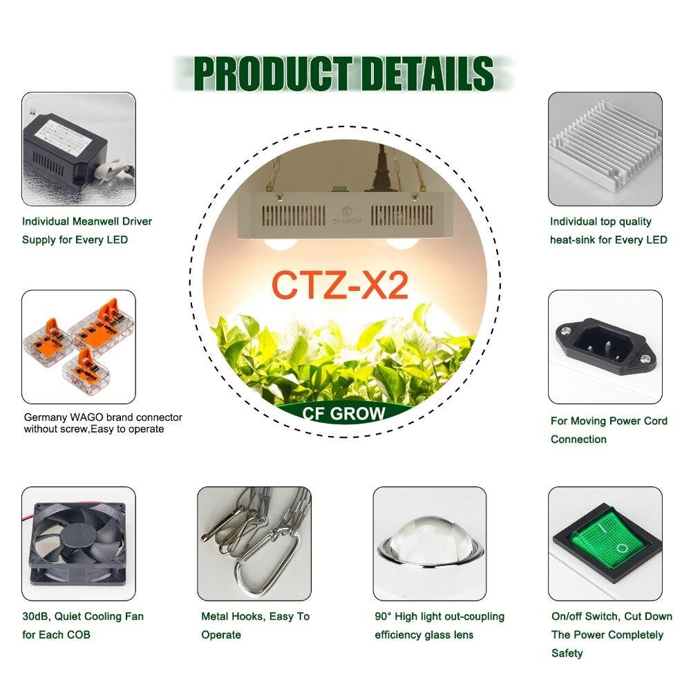 CTZ-_09