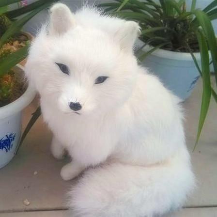 Kunstliche Tier Fuchs Modell Dekoration Pluschtier Haustier