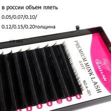 Russia Individual Eyelashes Volume 2D 3D 4D 5D Newest Premium Mink Eyelashes Soft Natural Black Volume Eyelash Extension Lash