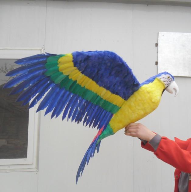 Énorme 80x140 cm ailes écartantes perroquet oiseau modèle polyéthylène & belles plumes perroquet maison jardin décoration cadeau s2996