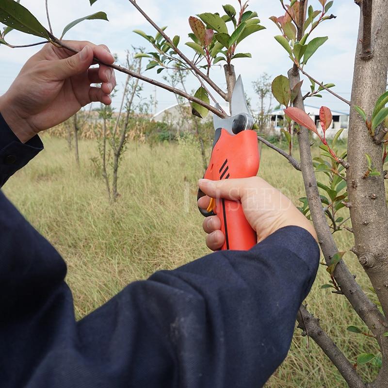 forbici elettriche da potatura per frutteto e giardino (lama - Attrezzi da giardinaggio - Fotografia 2