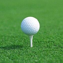 6 шт./компл. Спорт на открытом воздухе белое фиксированное колесико из полипропилена диаметром Пластик мячи для гольфа выдалбливают крытый ...