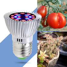 LED Phyto Lamp E14 Grow Light E27 Lampada Led Indoor Seedling Bulb 20W Plant Growing 220V Hydroponics Tent Box