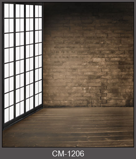 Indoor window photo background vinyl brick wall photography backdrops for art portrait photo studio  backgrounds CM-1206 shengyongbao 300cm 200cm vinyl custom photography backdrops brick wall theme photo studio props photography background brw 12