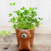 Novelty home lovely animal shape terracotta bonsai pot ceramic potted plants for desktop decor creative christmas gift