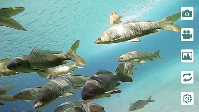 subaquática peixe finder apto para android ios telefone