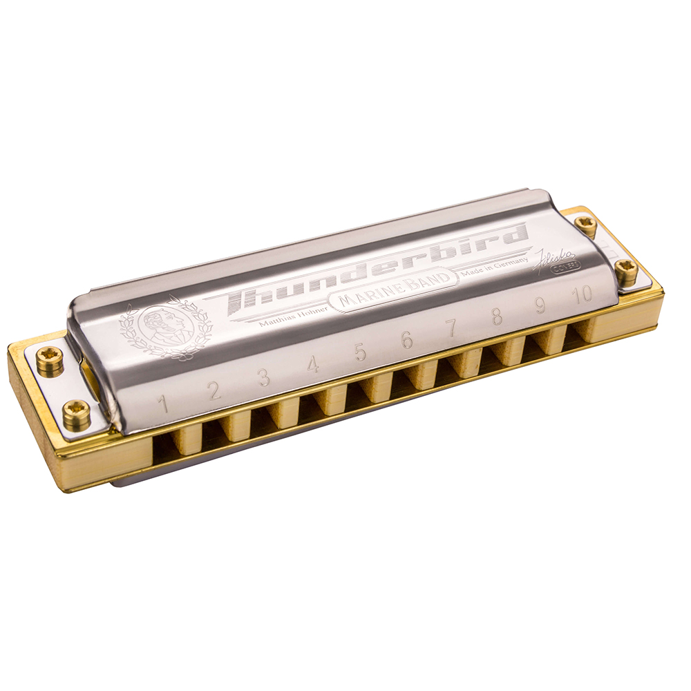 Hohner Thunderbird Harmonica Diatonic 10 Hole 20 Tones Blues Harp Mouth Organ Instrumentos Diatonic Key of C Musical Instruments easttop brass chromatic harmonica 16 hole brass abs comb musical instruments mouth organ chromatic slide harmonica good sound