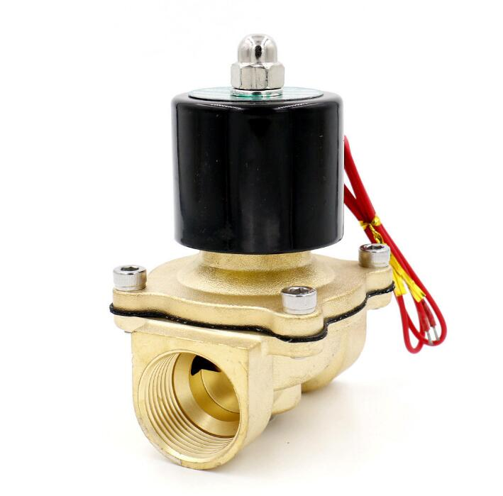 2W-250-25 AC 220V 2W250-25 Brass Body DC12V 24V AC110V 220V Brass Water Valve Electric Solenoid Valve Water Air N/C 2 Way 1 кулер aqua work 720t