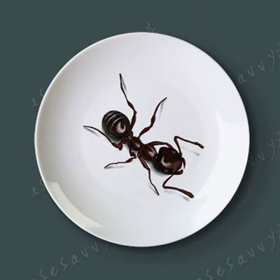 The New Creative Ceramic Decorative Hanging Plate Insect Art Tray Porcelain Plate 8 Inch Home, Hotel, Bar Wall Hanging