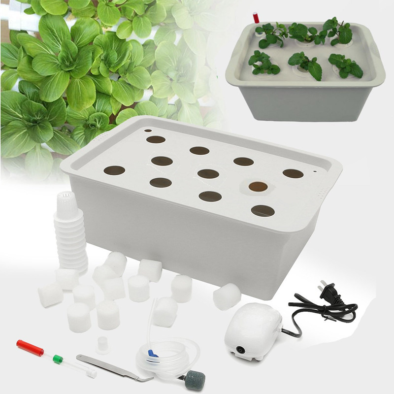 furos v sistema hidropnico jardim planta vegetal planta verde planter nursery pot copos caixa