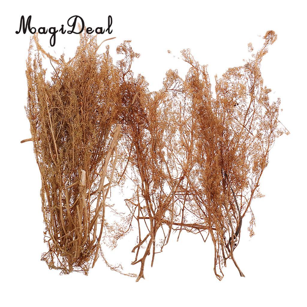 MagiDeal 1Pack Layout Dry Natural Quinoa Model DIY Tree Landscape For RR Train Diorama Train Railway Railroad Scene Scenery 25cm