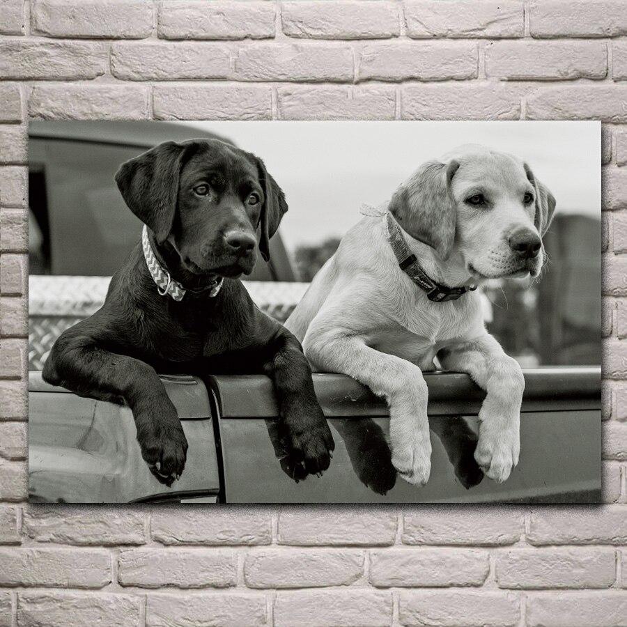 702 36 De Réductionanimaux Labrador Retriever Chiens Chiot Pattes Corps Noir Et Blanc Salon Art De La Maison Décor Bois Cadre Tissu Affiche