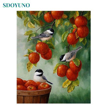 SDOYUNO Frame Apple Birds DIY Painting By Number Animals Modern Home Wall Art Picture Painting & Calligraphy Unique Gift 40x50(China)