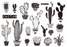 Cactus Transparent Clear Silicone Stamps for DIY Scrapbooking/Card Making/Kids Christmas Fun Decoration Supplies A641