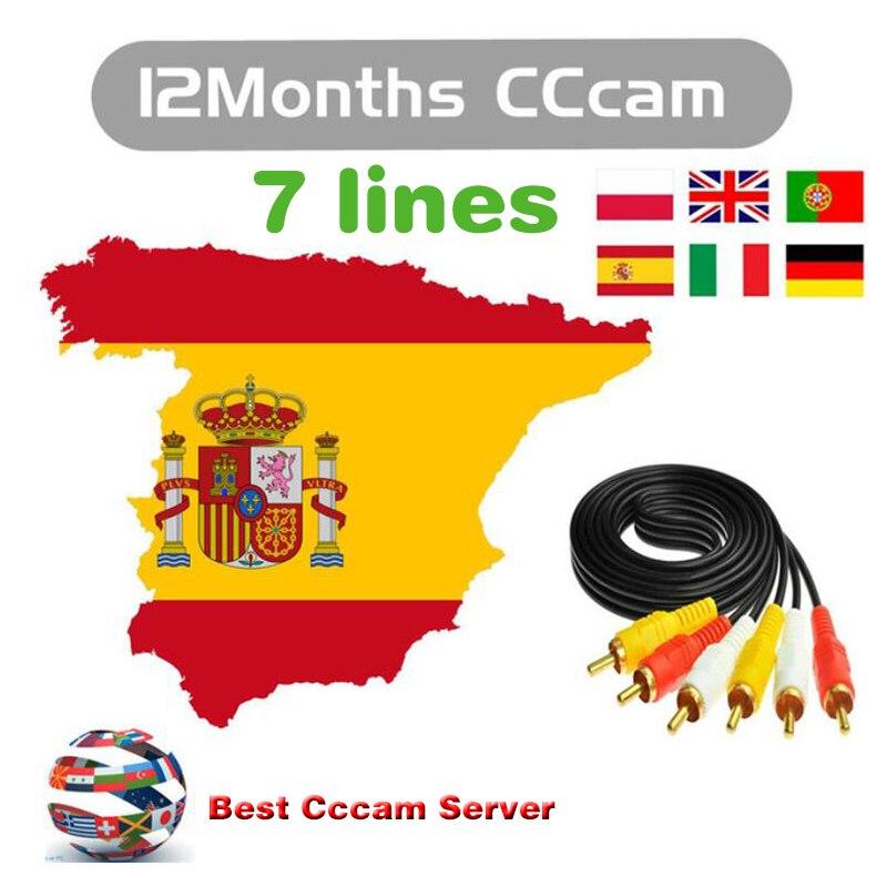 HD Cccam 7 Clines für digital Satellite TV Empfänger 1 Jahr Cccam Europa Cline ccam panel für Spanien Polen Deutschland portugal Italien