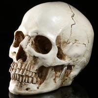 Halloween toys simulation 1:1 human skull terrorist resin skulls ghost cranium Skull Heads Crossbones Skulls