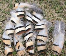 цена на Chukar feathers,100pcs/lot- NATURAL CHUKAR PARTRIDGE Hen Feather 4-8CM length freeshipping