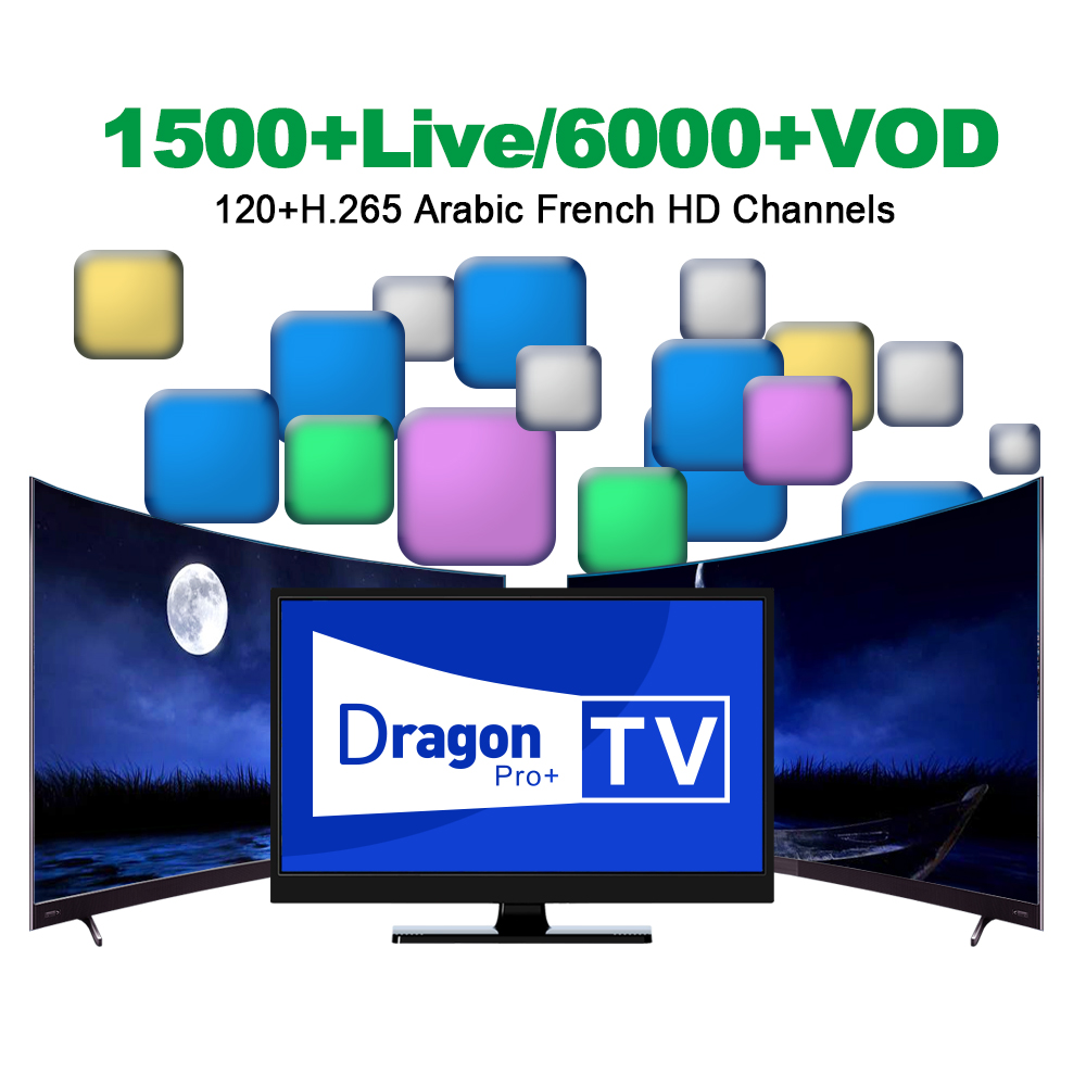 Dragon TV Pro Plus IPTV with H 265 Channels Best France Arabic IPTV Subscription 1500 Live