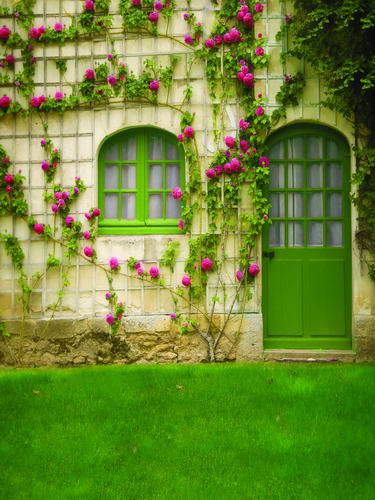 Customize washable wrinkle free flower green door photography backdrops for wedding photo studio portrait backgrounds HG-294 customize washable wrinkle free new york scenery photography backdrops for kids stage photo studio portrait backgrounds hg 373