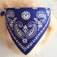 Scarf Collar for Your Cat